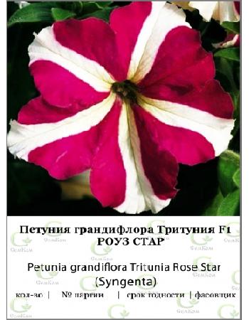 Петуния грандифлора Тритуния Роуз Стар 100др (SG) СЕМКОМ ПРОФИ