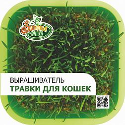 """Проращиватель """"Здоровья КЛАД"""" (для зеленой травки)"""