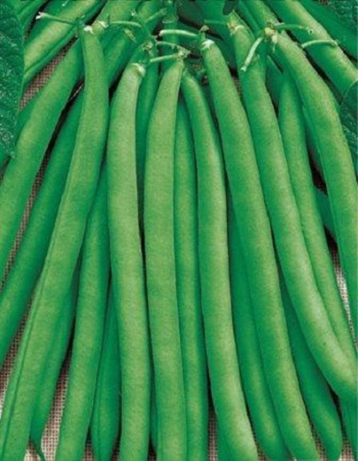 Фасоль овощная Сакса без волокна 615   5 гр б.п