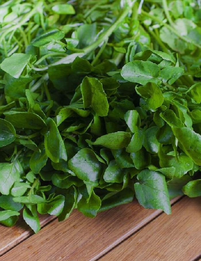 Кресс-салат Ореховый (УД) 0,8гр. цв.п.