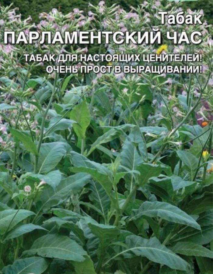 Табак Парламентский Час (УД)  цв.п 0,05 гр
