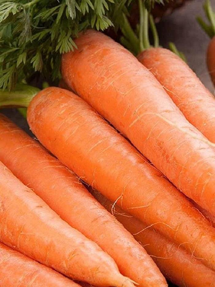 Морковь Зимний Десерт (УД) 1,5гр цв.п.