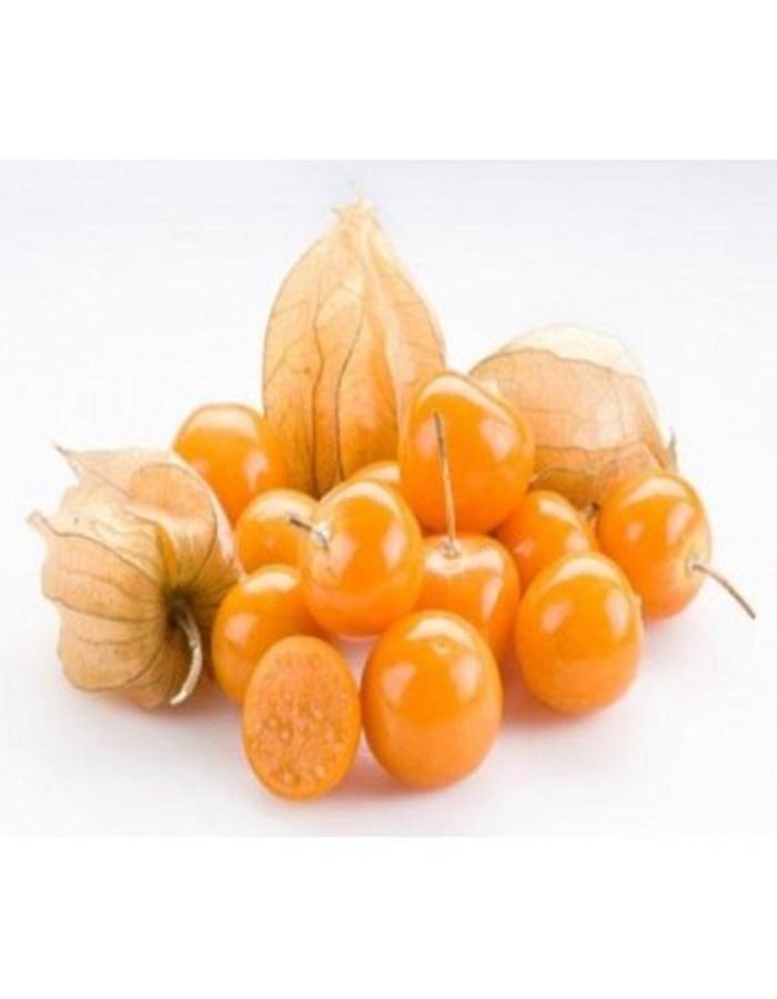 Физалис овощной Кондитер (УД) 20 шт