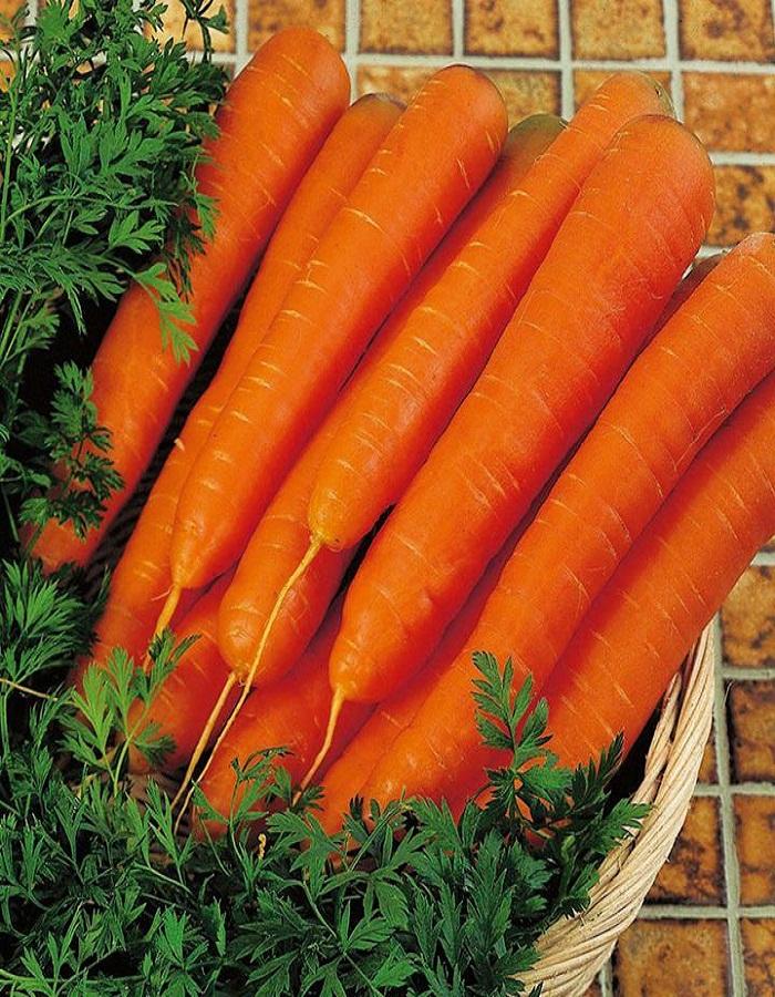 Морковь НИИОХ 336  2 гр б.п.