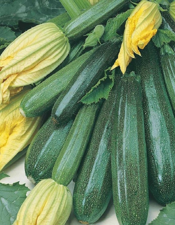 Кабачок Изумруд-цукини (УД) 10 шт цв.п