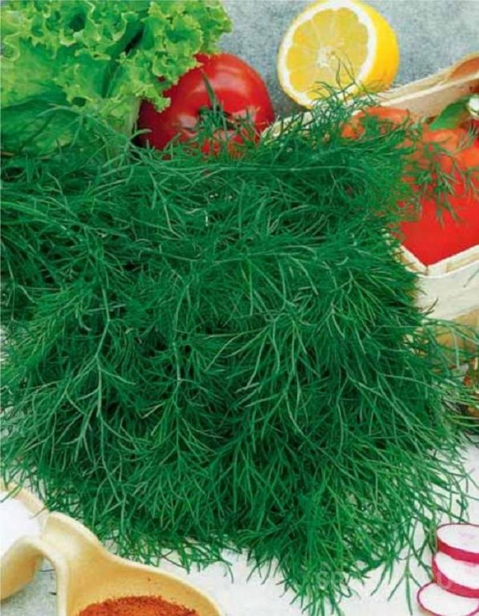 Укроп Карликовый (УД) 2 гр