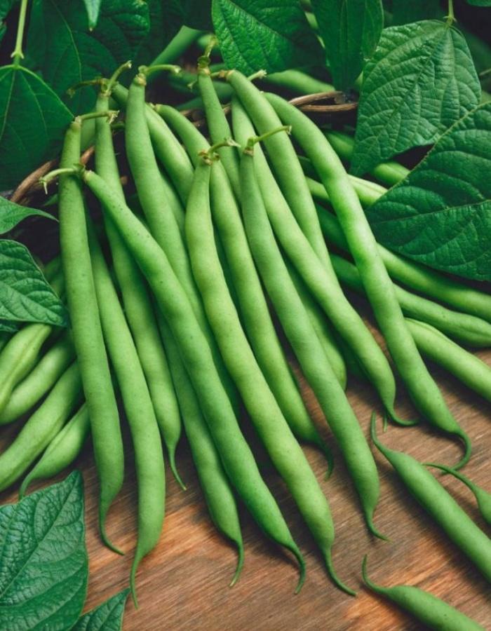 Фасоль спаржевая Серенгети (Vita Green) 5 гр цв.п