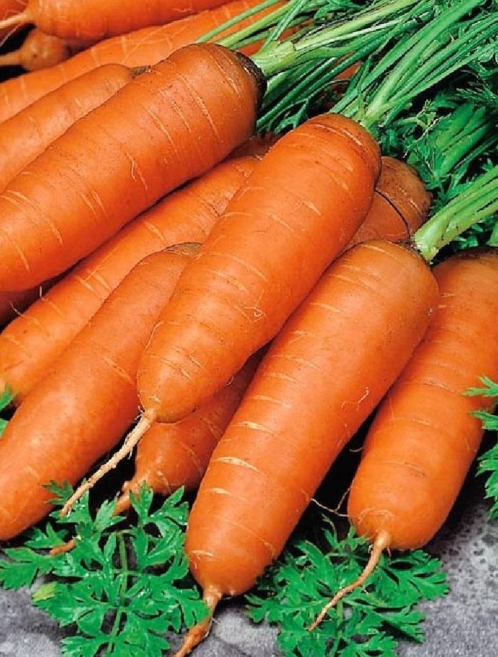 Морковь Бейби F1 (УД) 1гр цв.п.