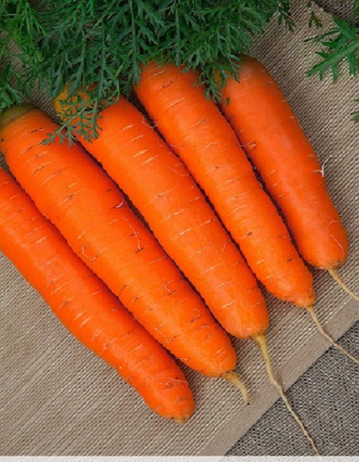 Морковь Детская сладость (Гранулы)  300 шт
