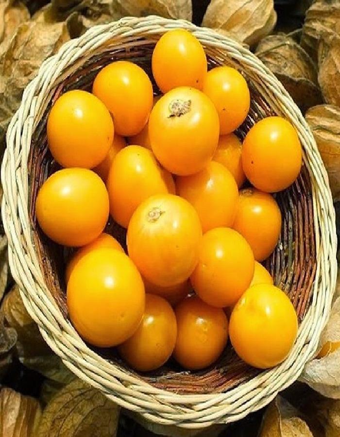 Физалис овощной Лакомка 0,2 гр цв/п