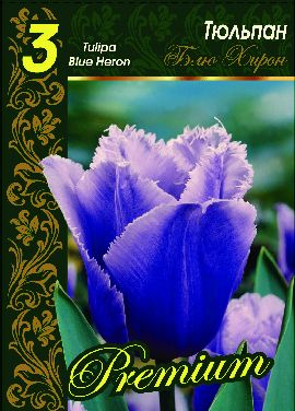 Тюльпан Блю Хирон 1 уп.(3шт.) Фракция 12/+